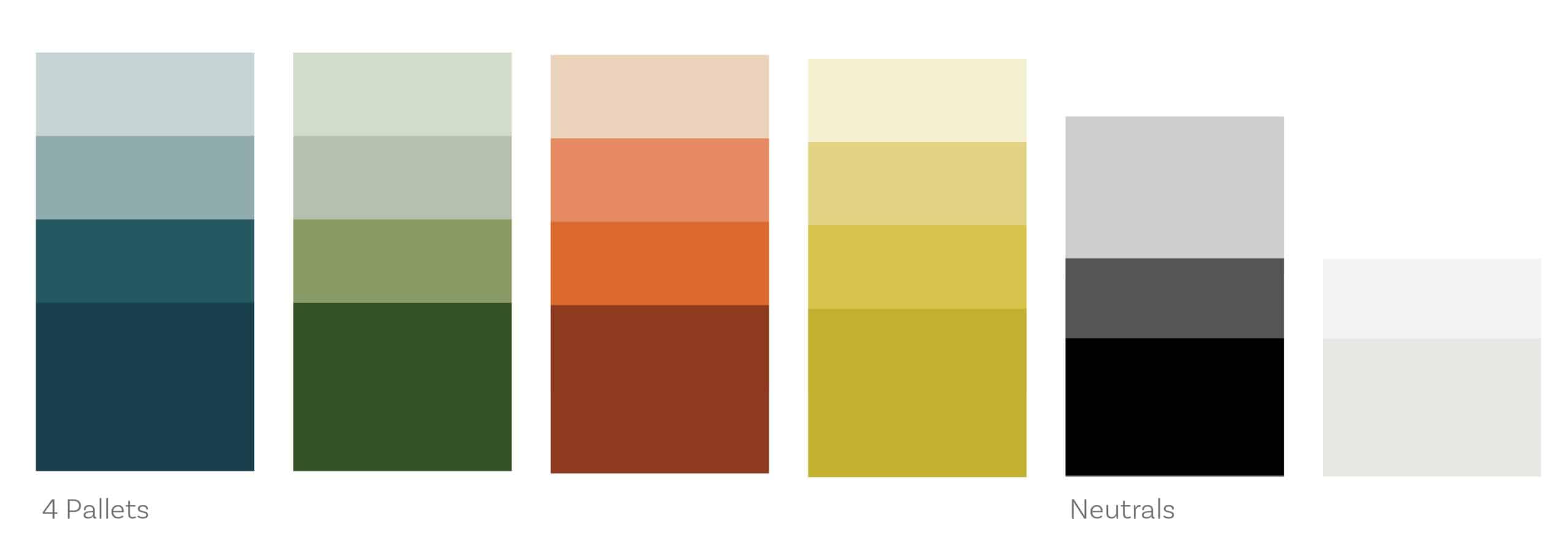 Human_Branding_By_Stellen_Design_Color Pallet